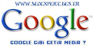 google gibi getir
