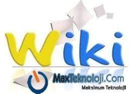 Wiki baclink alma