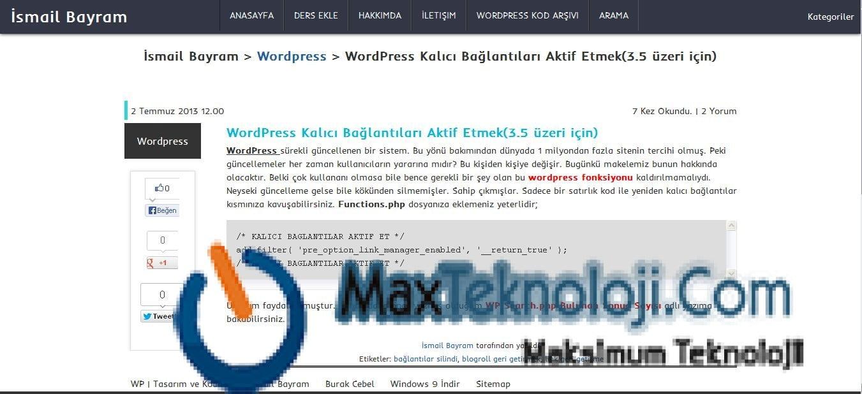 WordPress isoPer Kişisel Blog Teması, Blog Teması