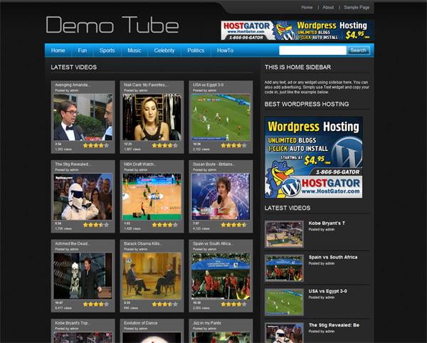 wp video teması